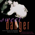 Sweed Danger audiobook