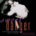 Sweed Danger audio